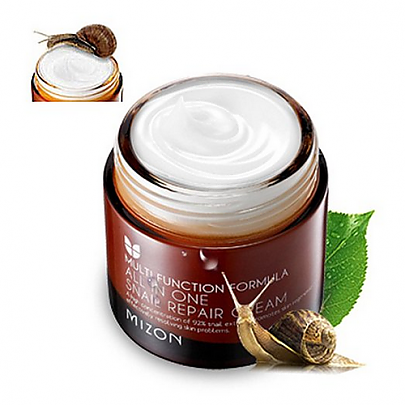 [Mizon] All In One Snail Repair Cream 75ml (Skin Regeneration , Anti-Wrinkle, Elastic)