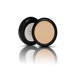 [Missha] The style perfect corrector_light beige