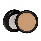 [Missha] The Style Perfect Concealer (Natural Beige)