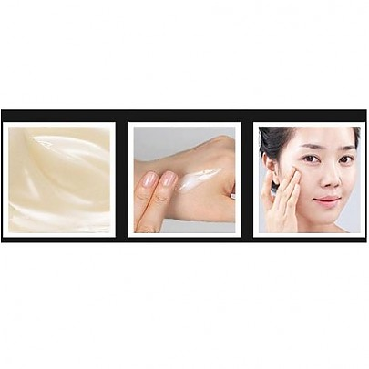 [Mizon] Black Snail All In One Cream 75ml (Improvement of Skin Tone, Anti-wrinkle, Full Moisturizing)